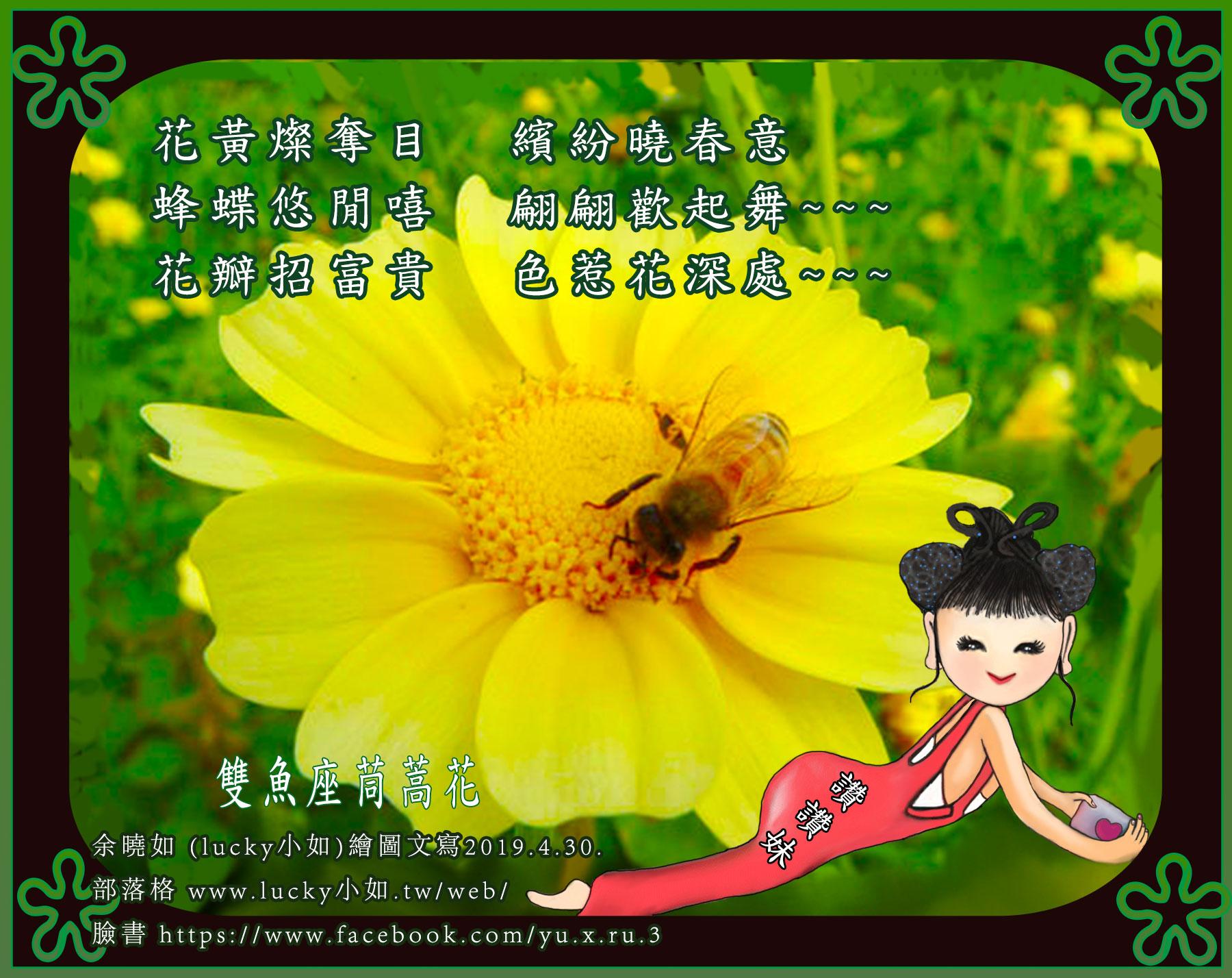 """漂亮吧! 我的""""星座花"""" ~ 看了挺順心的!來 ~ 聽 我 頌一詞 吧 !   花瓣招富貴 色惹花深處~~~"""